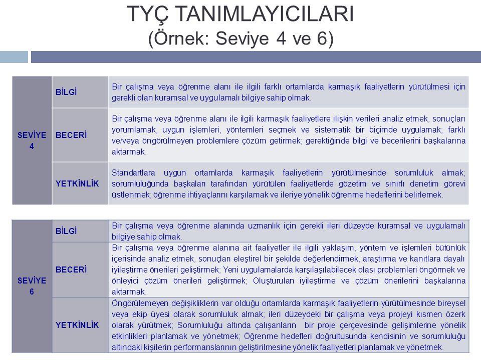 TYÇ TANIMLAYICILARI (Örnek: Seviye 4 ve 6)