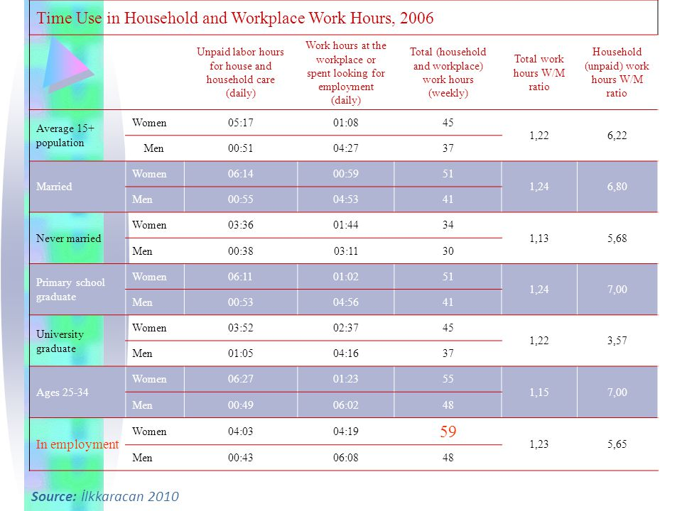 Time Use in Household and Workplace Work Hours, 2006
