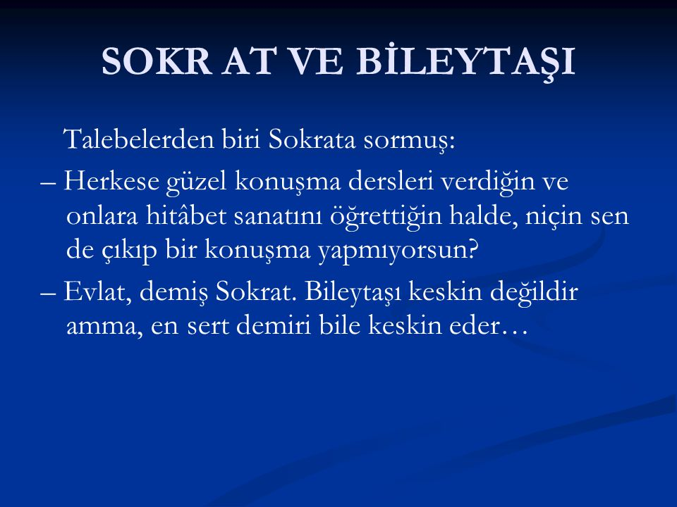 SOKR AT VE BİLEYTAŞI