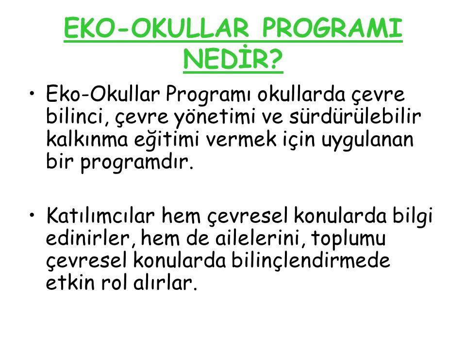 EKO-OKULLAR PROGRAMI NEDİR
