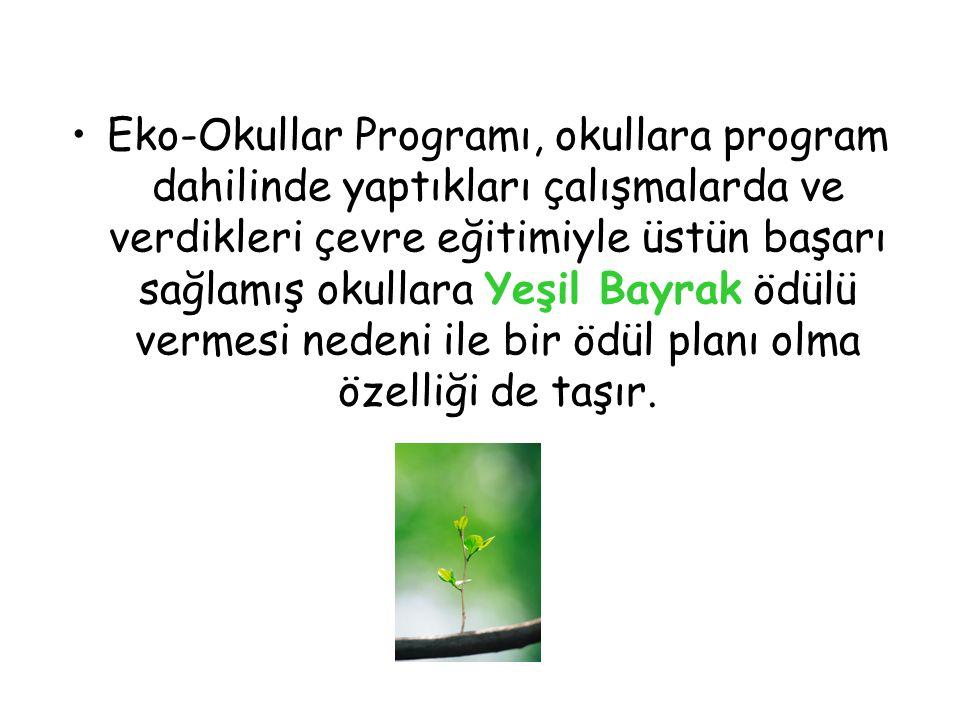 Eko-Okullar Programı, okullara program dahilinde yaptıkları çalışmalarda ve verdikleri çevre eğitimiyle üstün başarı sağlamış okullara Yeşil Bayrak ödülü vermesi nedeni ile bir ödül planı olma özelliği de taşır.