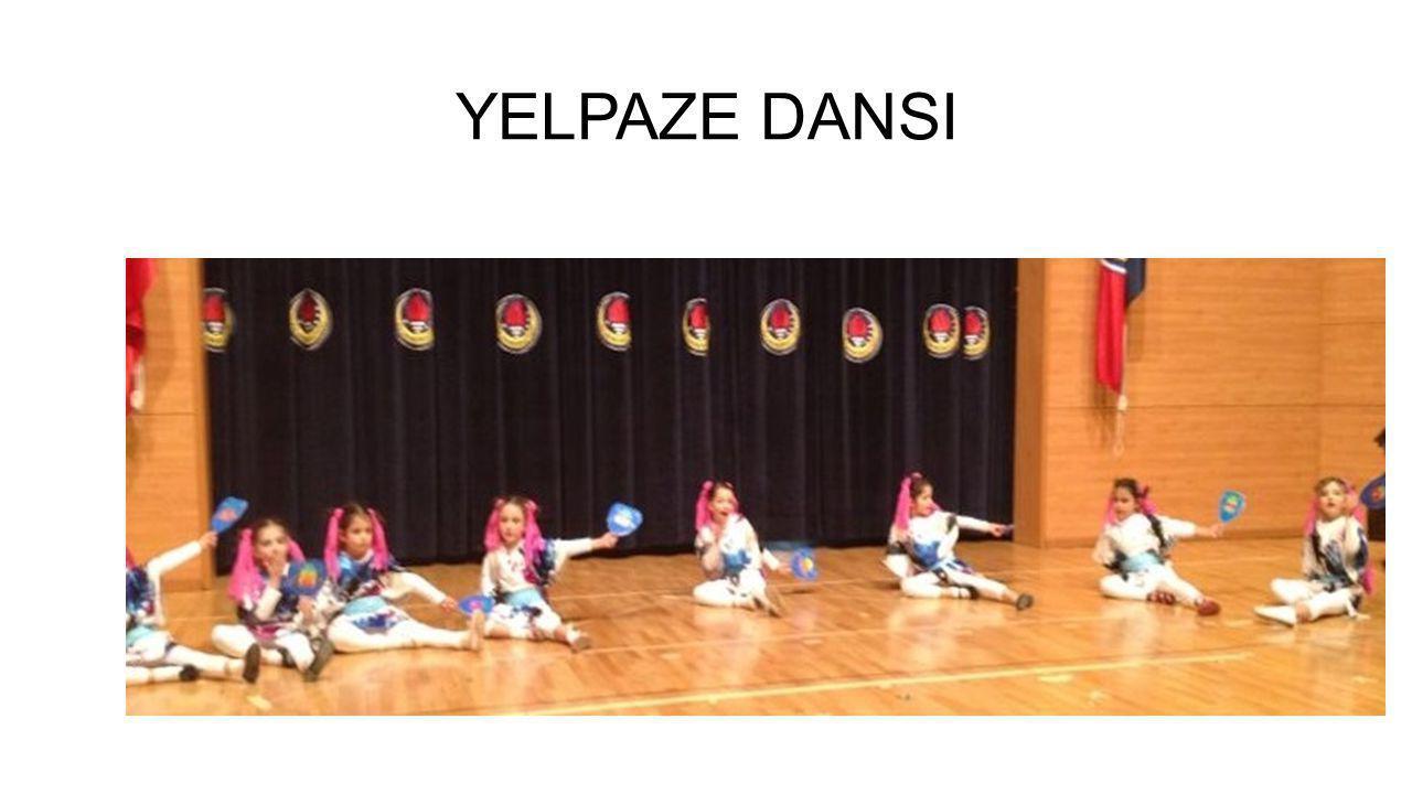 YELPAZE DANSI