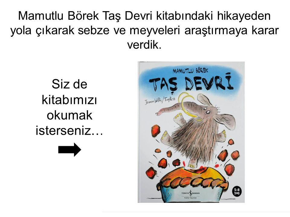 Siz de kitabımızı okumak isterseniz…