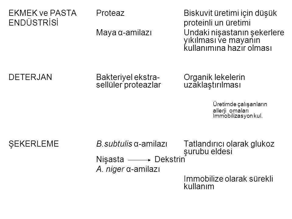EKMEK ve PASTA Proteaz Biskuvit üretimi için düşük