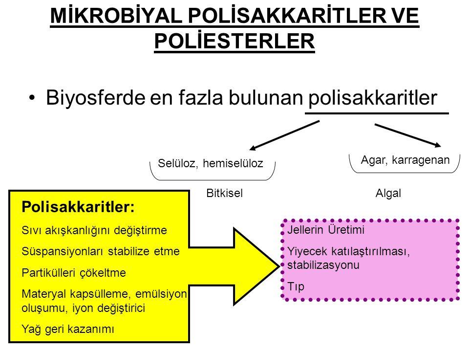 MİKROBİYAL POLİSAKKARİTLER VE POLİESTERLER