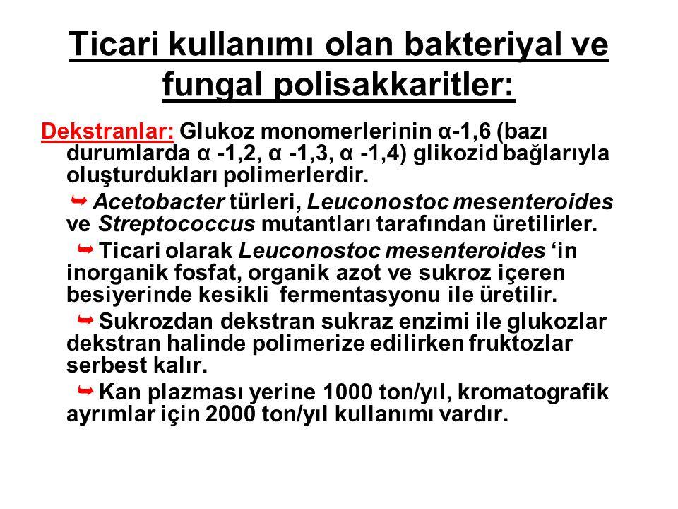 Ticari kullanımı olan bakteriyal ve fungal polisakkaritler: