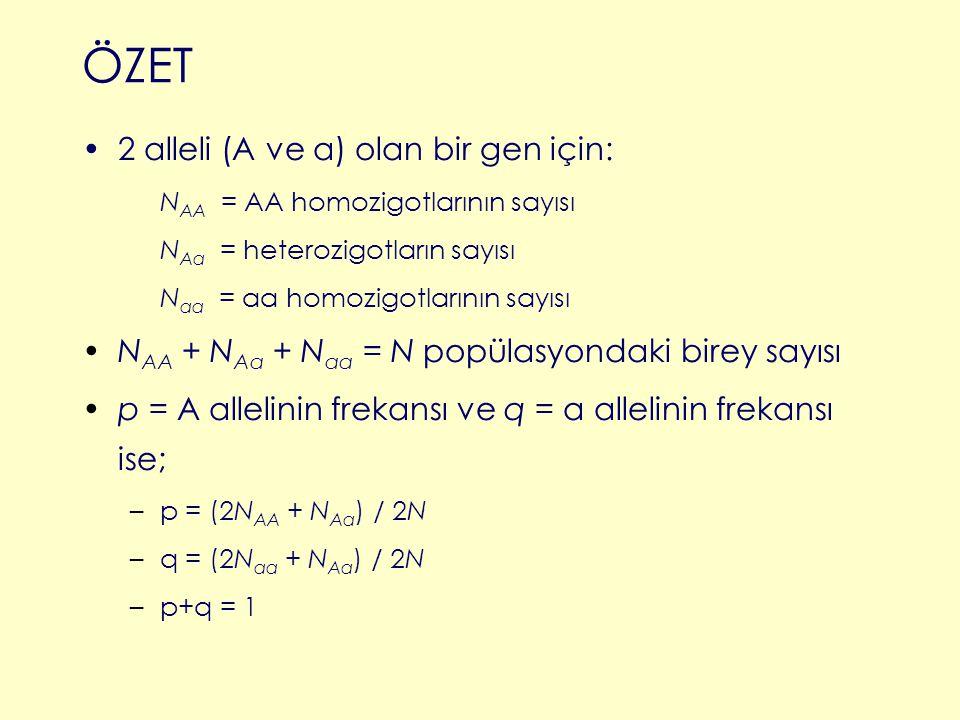 ÖZET 2 alleli (A ve a) olan bir gen için: