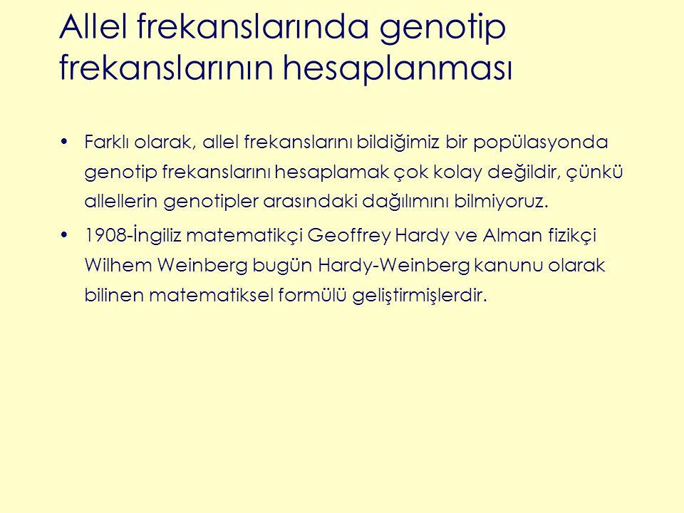 Allel frekanslarında genotip frekanslarının hesaplanması