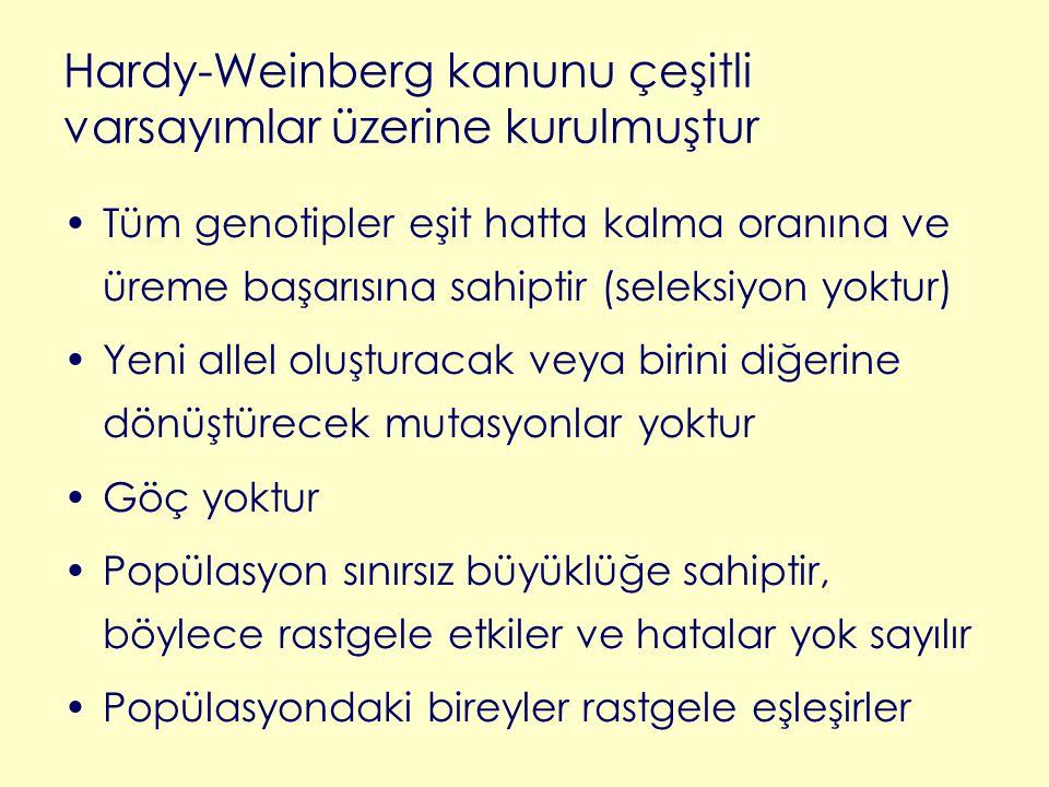 Hardy-Weinberg kanunu çeşitli varsayımlar üzerine kurulmuştur