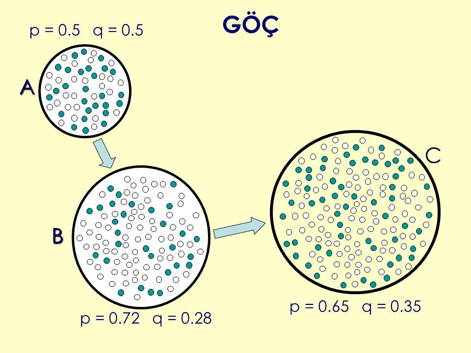 GÖÇ p = 0.5 q = 0.5 A C B p = 0.65 q = 0.35 p = 0.72 q = 0.28