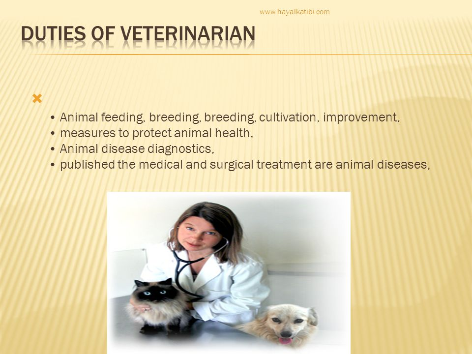 Duties of veterinarian
