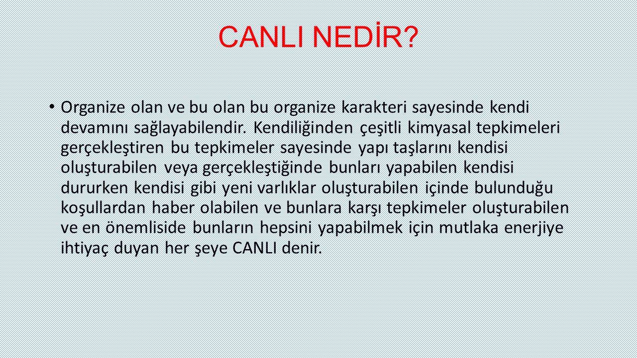 CANLI NEDİR