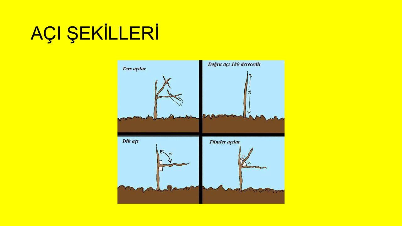 AÇI ŞEKİLLERİ