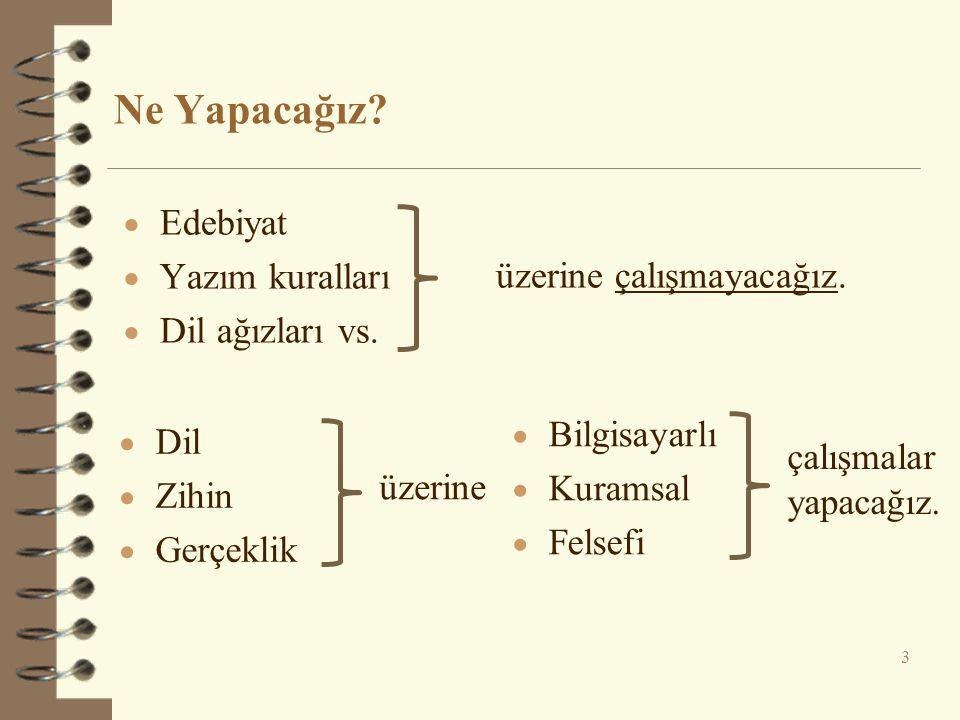 Ne Yapacağız Edebiyat Yazım kuralları Dil ağızları vs.
