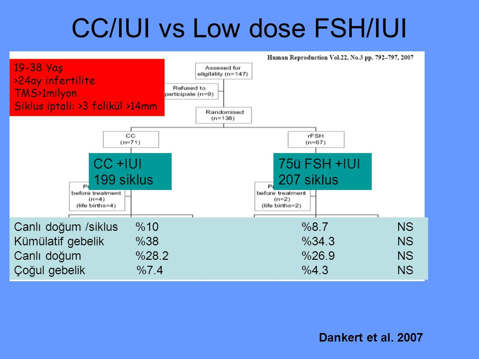 CC/IUI vs Low dose FSH/IUI