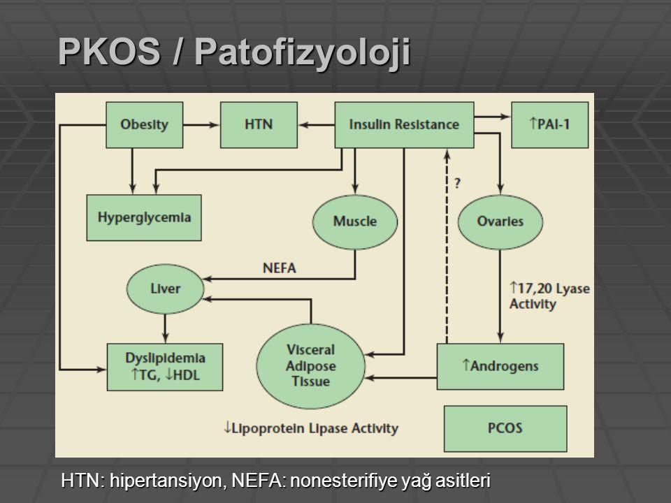 PKOS / Patofizyoloji HTN: hipertansiyon, NEFA: nonesterifiye yağ asitleri