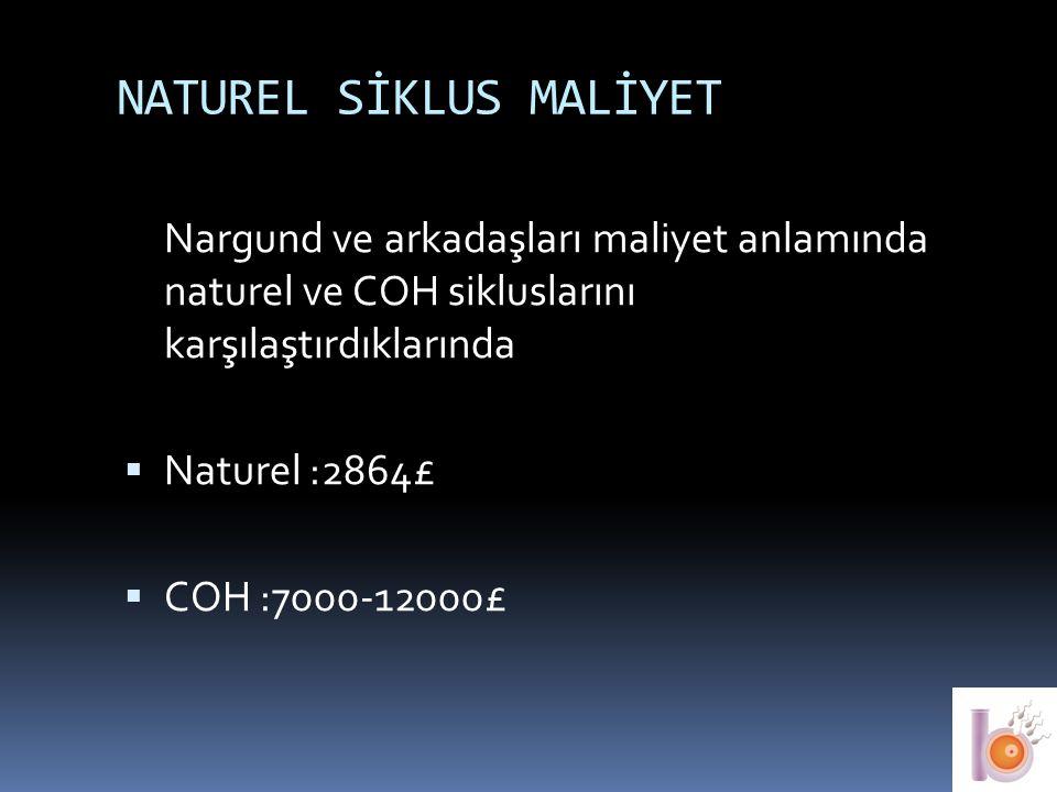 NATUREL SİKLUS MALİYET