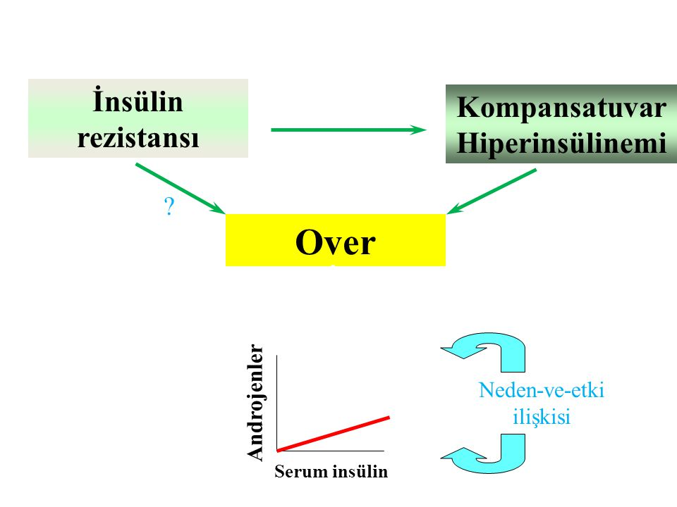 Kompansatuvar Hiperinsülinemi