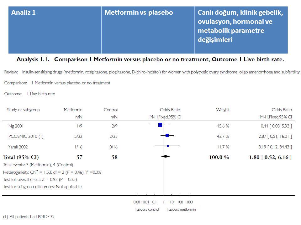 Analiz 1 Metformin vs plasebo.