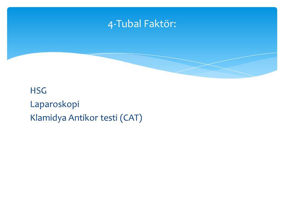 4-Tubal Faktör: HSG Laparoskopi Klamidya Antikor testi (CAT)