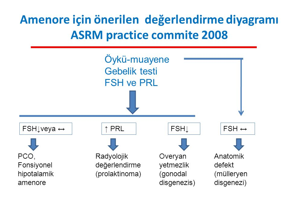 Amenore için önerilen değerlendirme diyagramı ASRM practice commite 2008