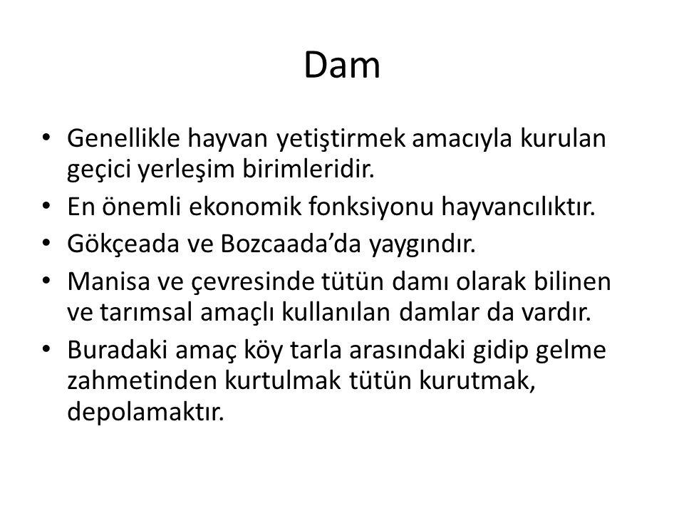 Dam Genellikle hayvan yetiştirmek amacıyla kurulan geçici yerleşim birimleridir. En önemli ekonomik fonksiyonu hayvancılıktır.