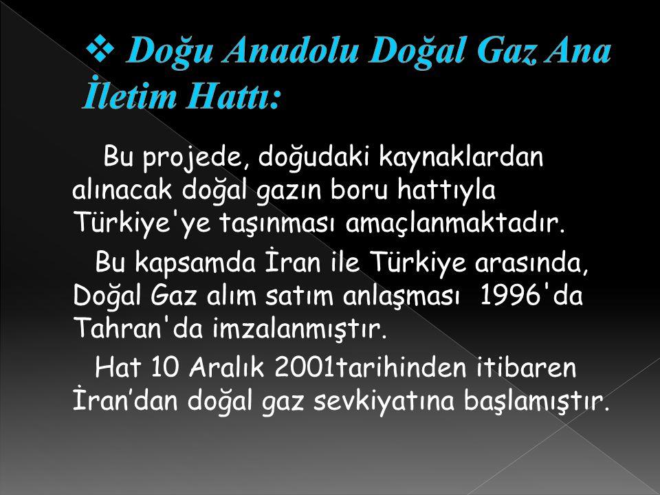 Doğu Anadolu Doğal Gaz Ana İletim Hattı: