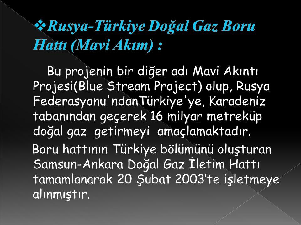 Rusya-Türkiye Doğal Gaz Boru Hattı (Mavi Akım) :