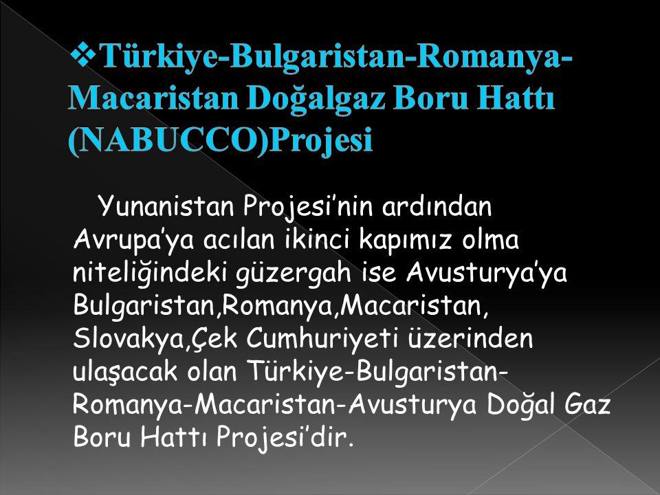 Türkiye-Bulgaristan-Romanya-Macaristan Doğalgaz Boru Hattı (NABUCCO)Projesi