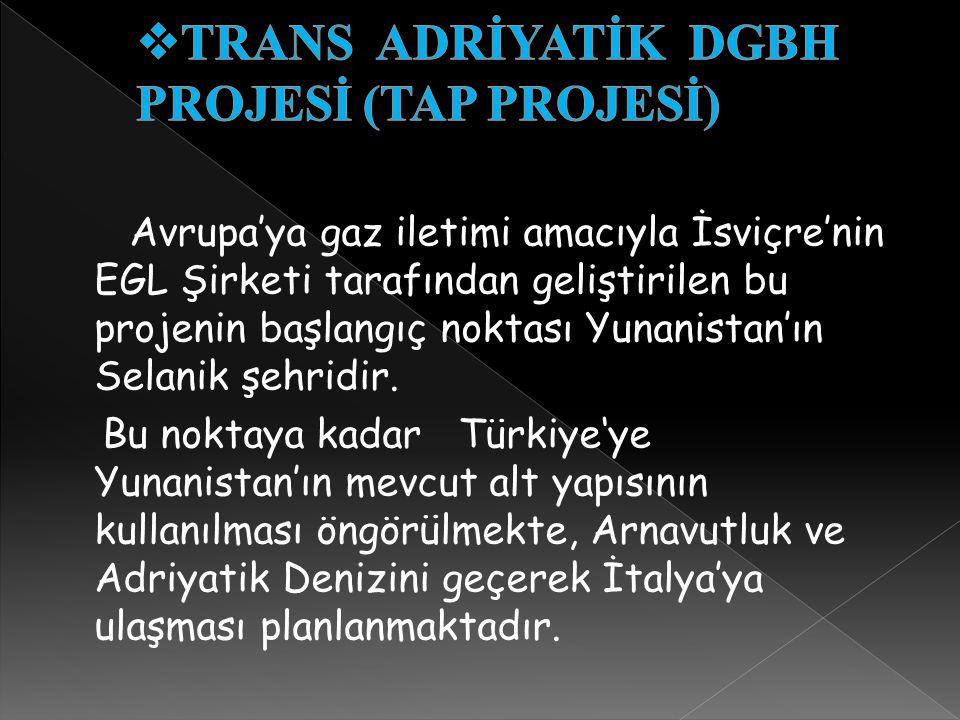 TRANS ADRİYATİK DGBH PROJESİ (TAP PROJESİ)
