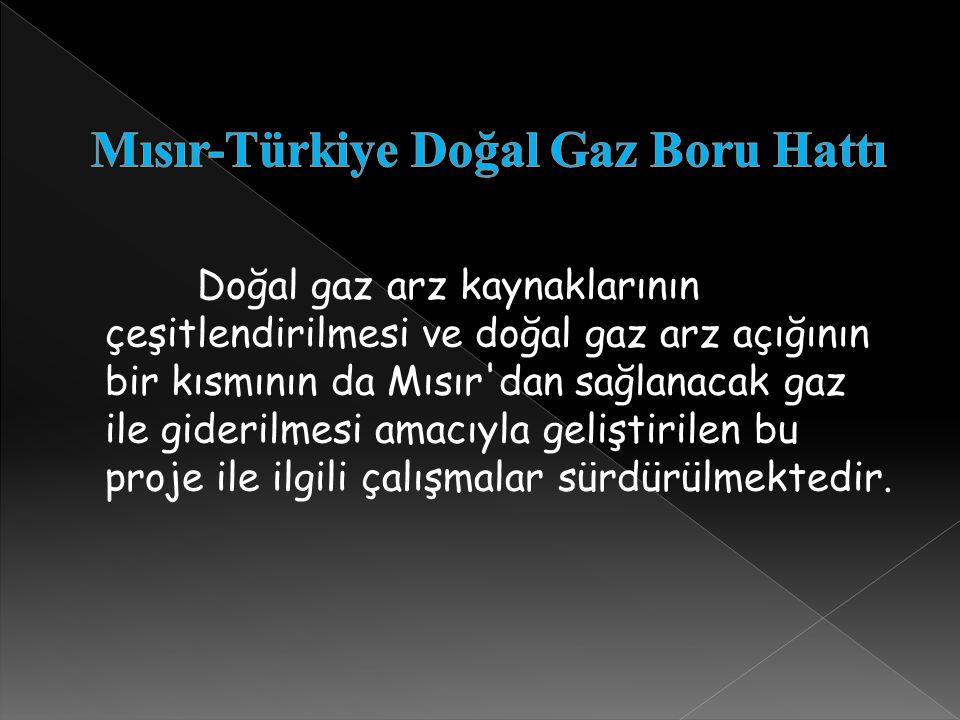 Mısır-Türkiye Doğal Gaz Boru Hattı