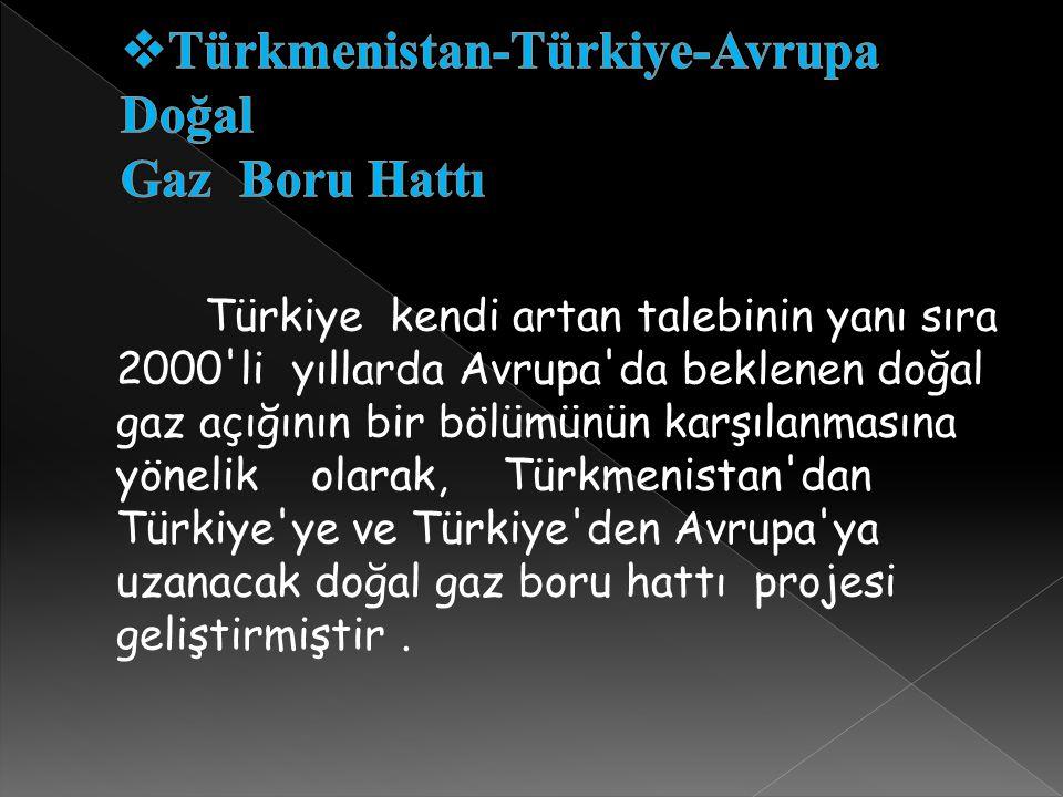 Türkmenistan-Türkiye-Avrupa Doğal Gaz Boru Hattı