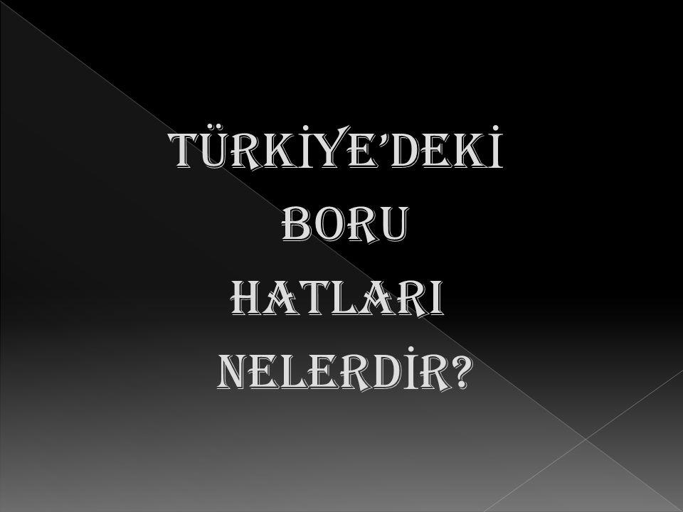 TÜRKİYE'DEKİ BORU HATLARI NELERDİR