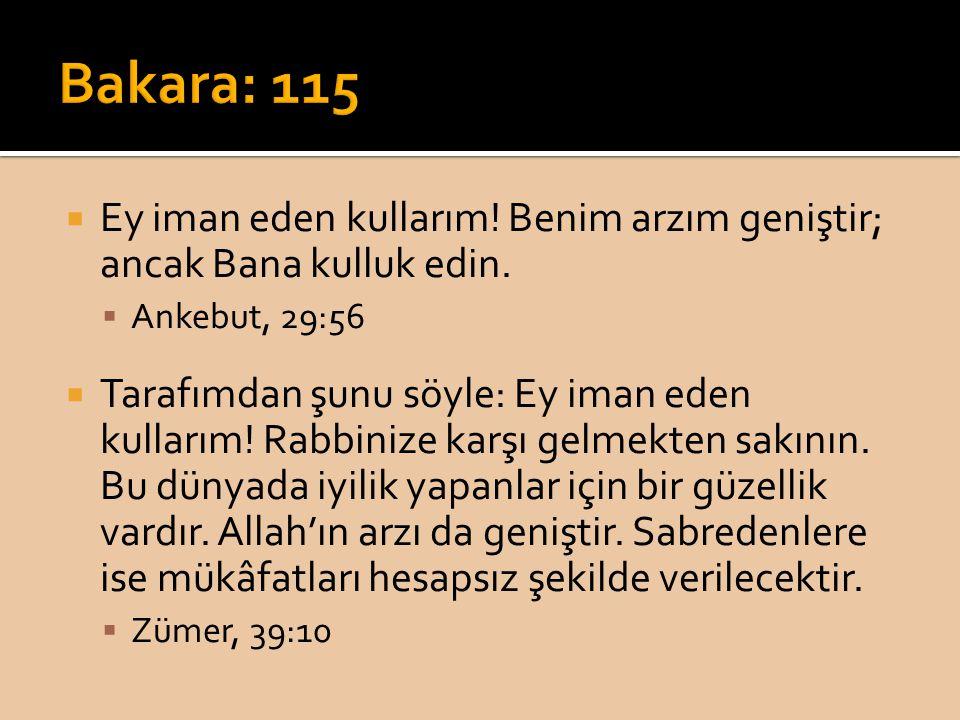 Bakara: 115 Ey iman eden kullarım! Benim arzım geniştir; ancak Bana kulluk edin. Ankebut, 29:56.