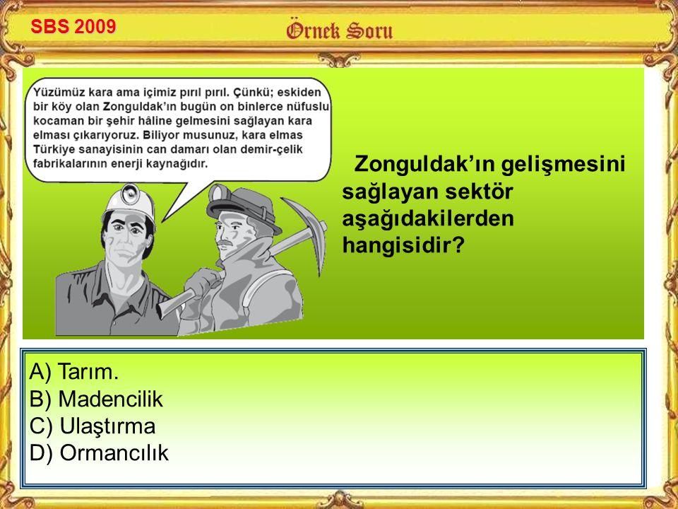 Zonguldak'ın gelişmesini sağlayan sektör aşağıdakilerden hangisidir