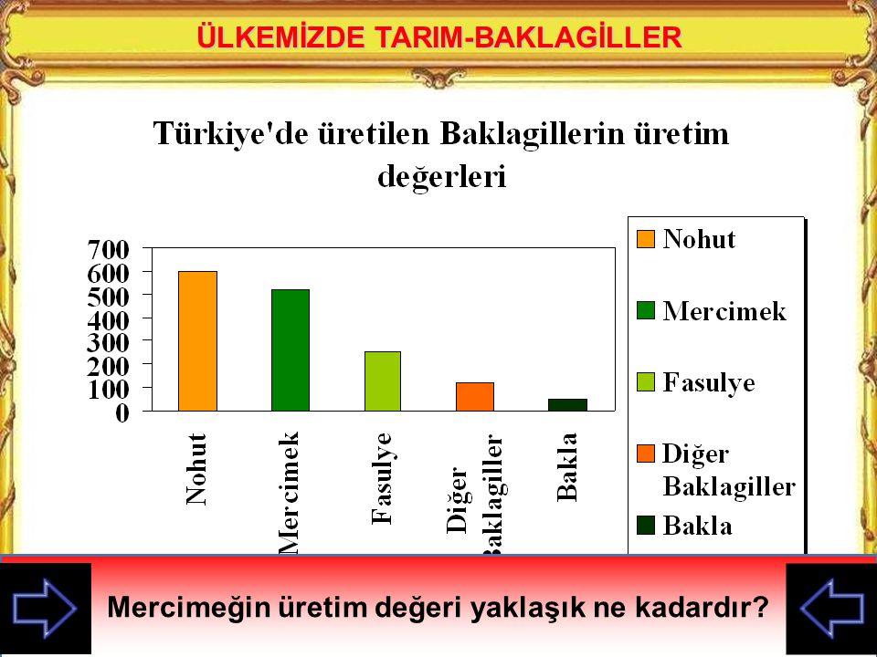 ÜLKEMİZDE TARIM-BAKLAGİLLER
