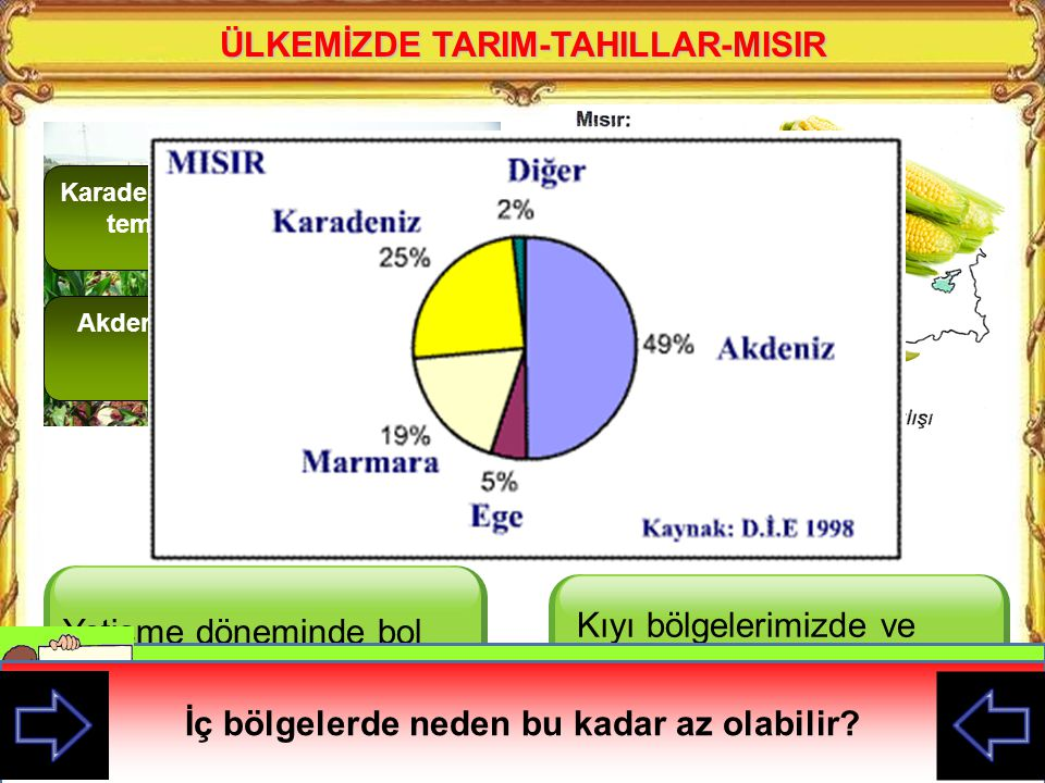 ÜLKEMİZDE TARIM-TAHILLAR-MISIR