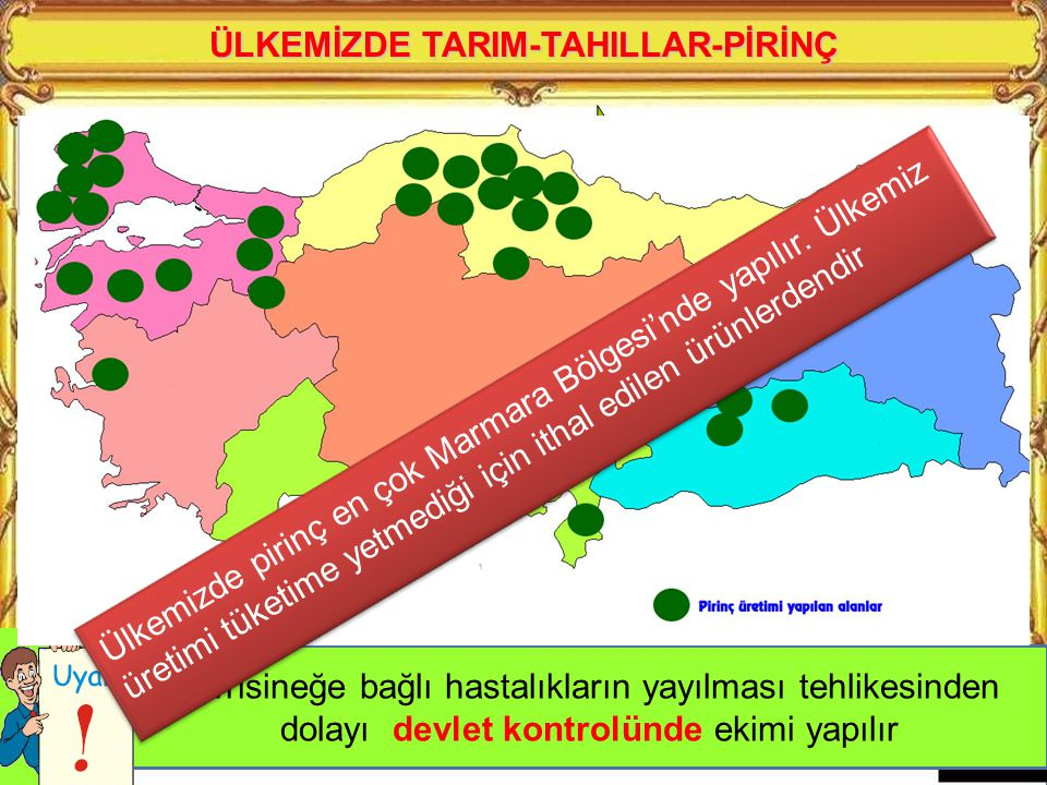 ÜLKEMİZDE TARIM-TAHILLAR-PİRİNÇ