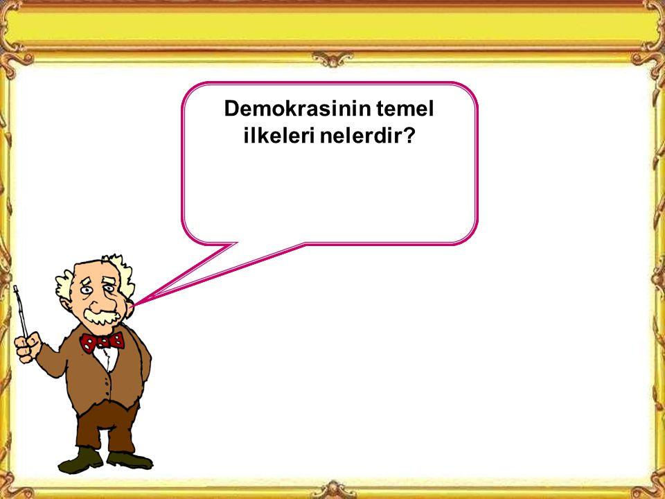 Demokrasinin temel ilkeleri nelerdir