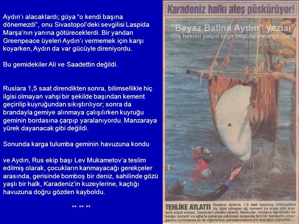 Aydın'ı alacaklardı; güya o kendi başına dönemezdi , onu Sivastopol'deki sevgilisi Laspida Marşa'nın yanına götüreceklerdi. Bir yandan Greenpeace üyeleri Aydın'ı vermemek için karşı koyarken, Aydın da var gücüyle direniyordu.