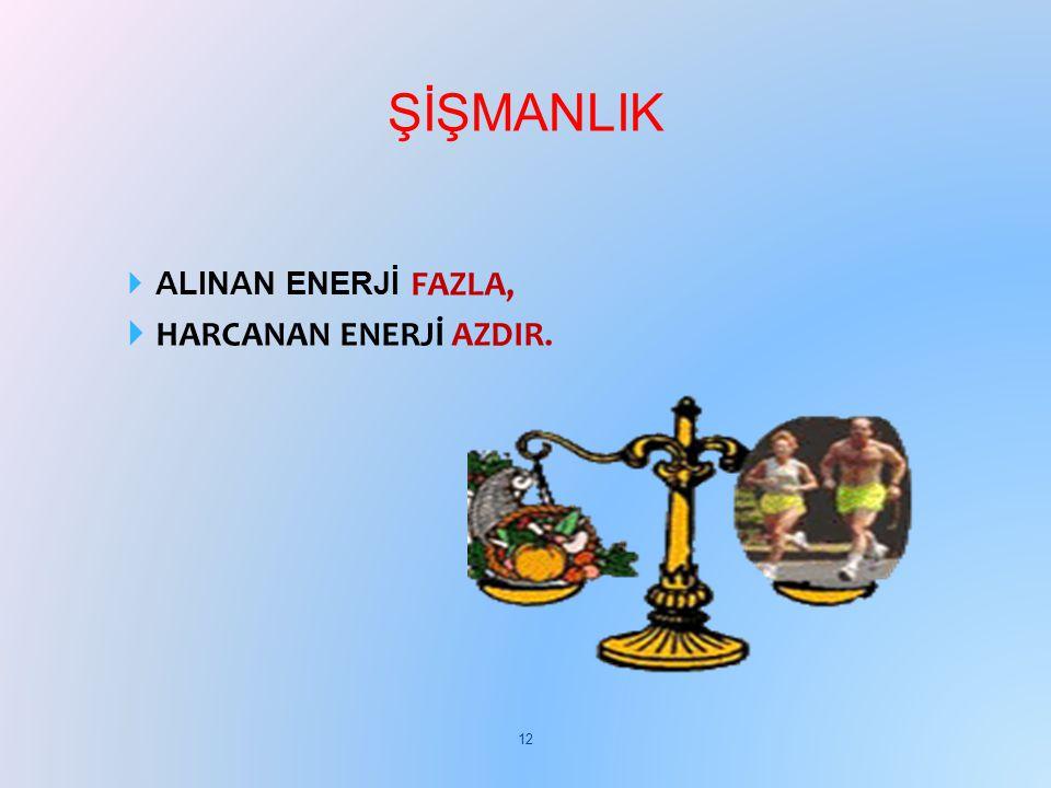 ŞİŞMANLIK ALINAN ENERJİ FAZLA, HARCANAN ENERJİ AZDIR.