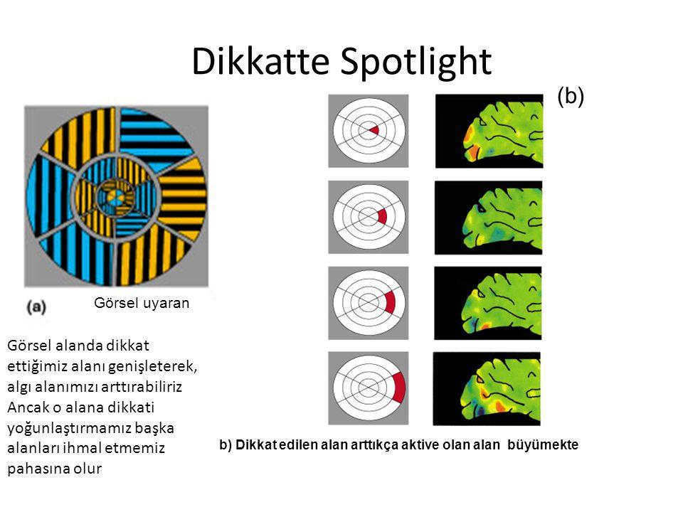 Dikkatte Spotlight (b)