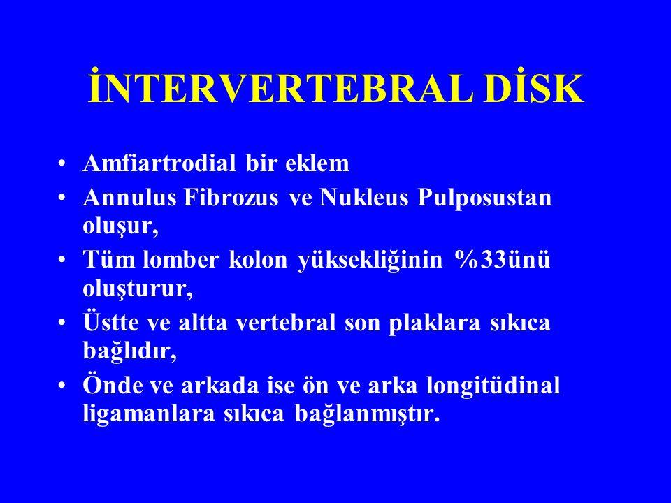 İNTERVERTEBRAL DİSK Amfiartrodial bir eklem
