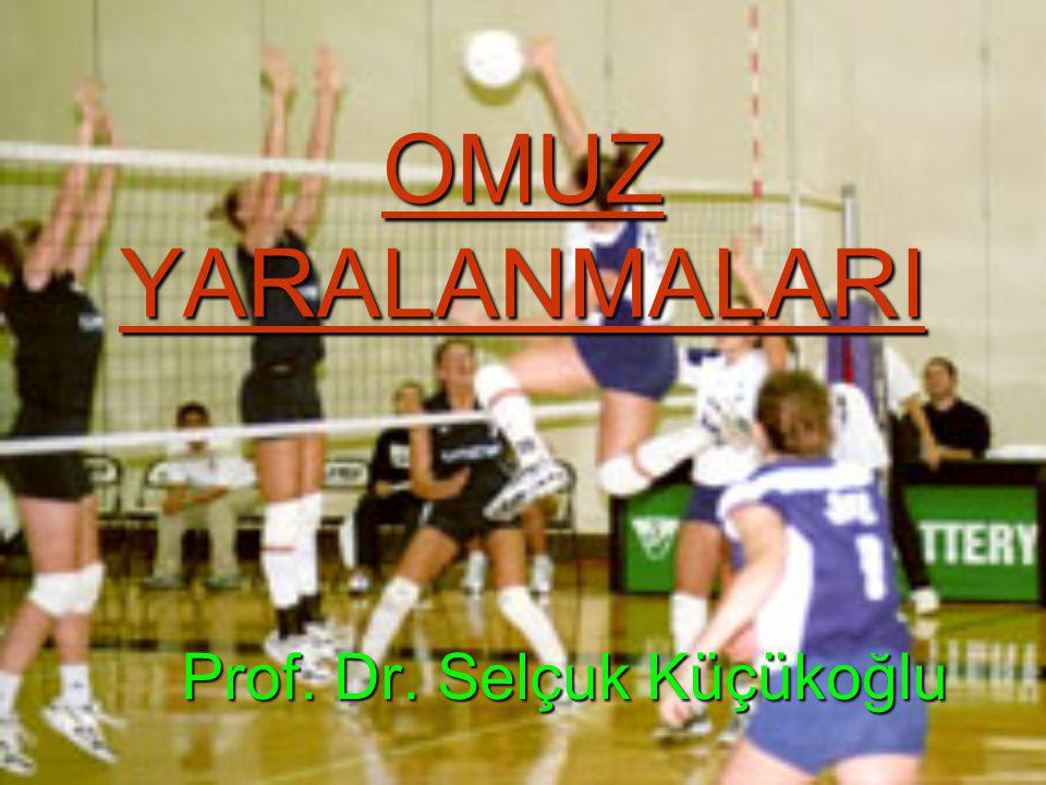 Prof. Dr. Selçuk Küçükoğlu