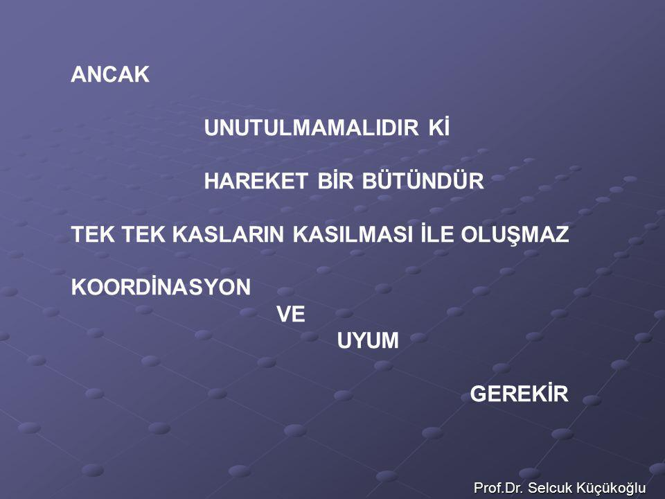 Prof.Dr. Selcuk Küçükoğlu