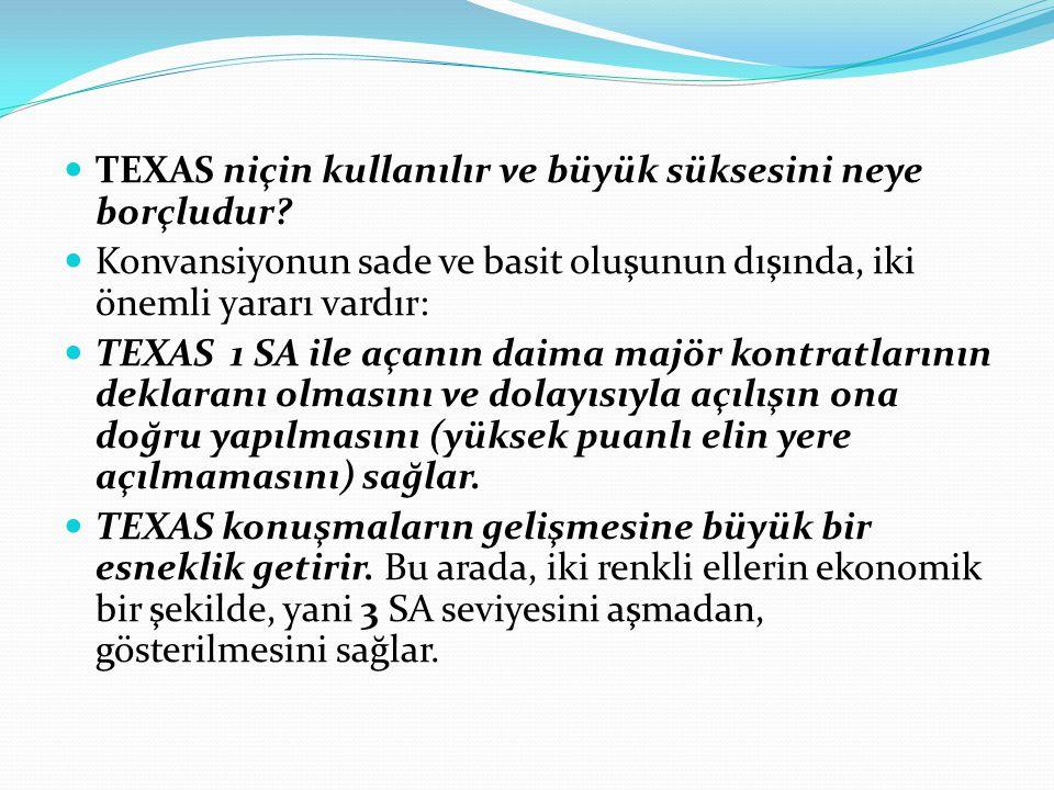 TEXAS niçin kullanılır ve büyük süksesini neye borçludur