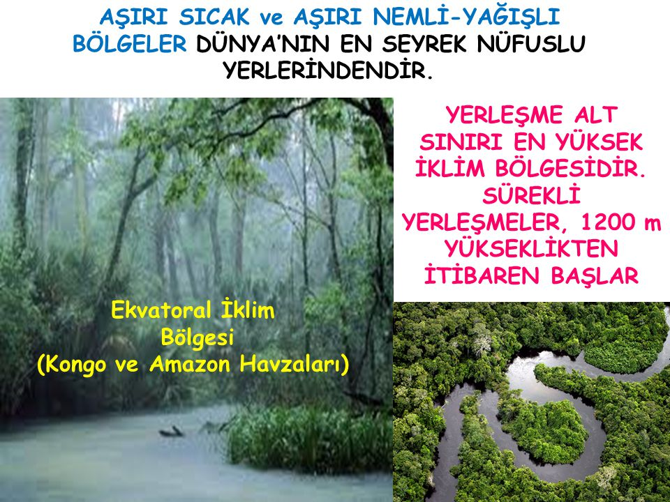 (Kongo ve Amazon Havzaları)