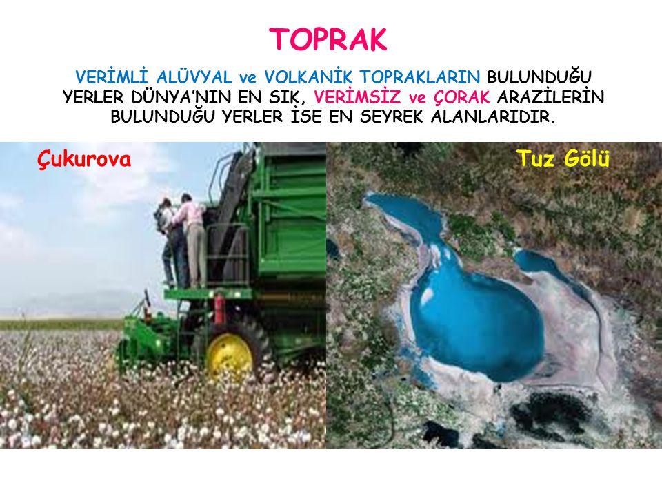 TOPRAK Tuz Gölü Çukurova