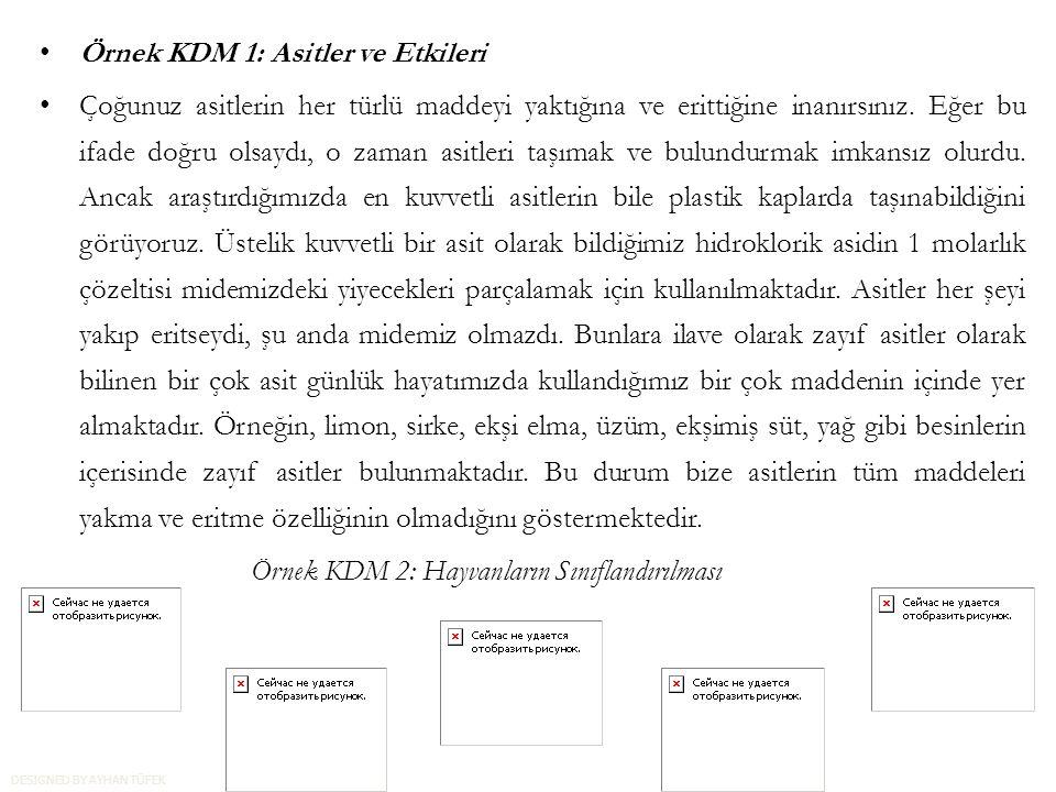 Örnek KDM 1: Asitler ve Etkileri