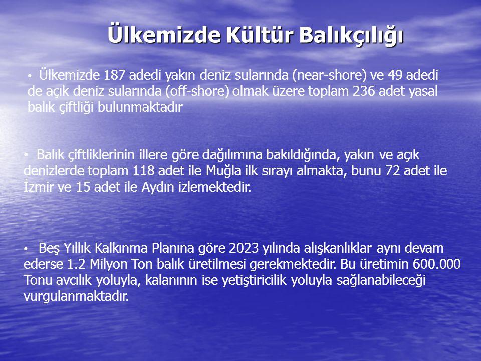 Ülkemizde Kültür Balıkçılığı